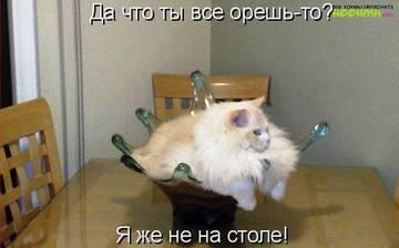 http://s2.uploads.ru/t/cUidr.jpg