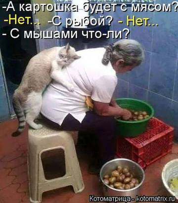 http://s2.uploads.ru/t/cbYm6.jpg