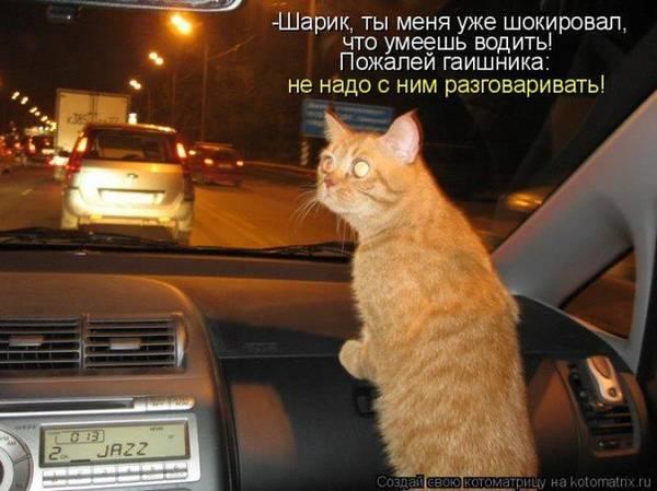 http://s2.uploads.ru/t/cqmJy.jpg