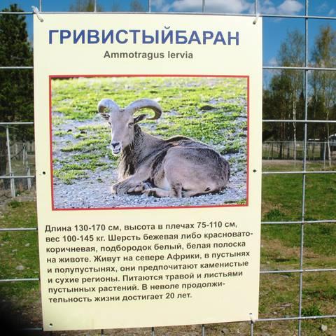 http://s2.uploads.ru/t/cqnhi.jpg