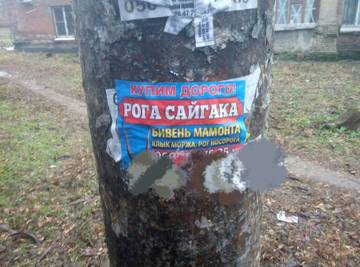 http://s2.uploads.ru/t/cx0zh.jpg