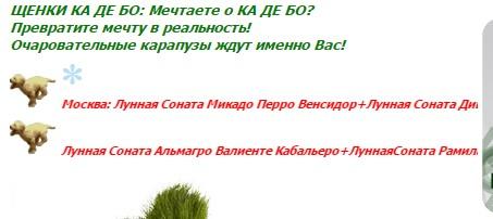http://s2.uploads.ru/t/dElfs.jpg