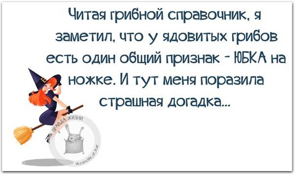 http://s2.uploads.ru/t/dIbYT.jpg