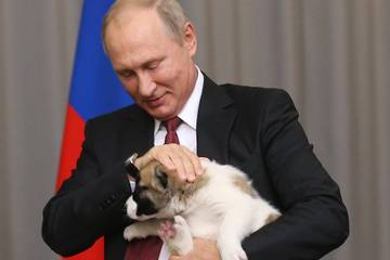 http://s2.uploads.ru/t/dcjlv.jpg