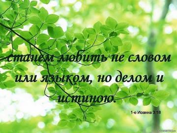 http://s2.uploads.ru/t/dfE04.jpg