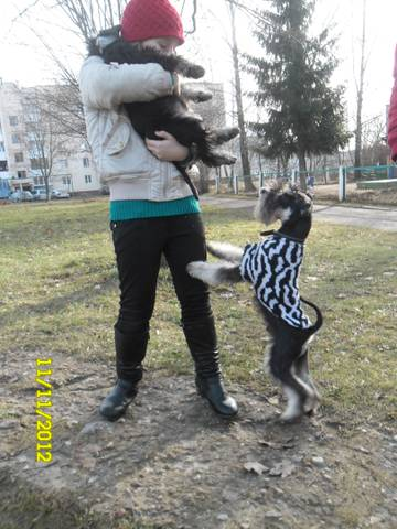 http://s2.uploads.ru/t/dq0NB.jpg