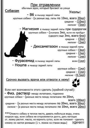 http://s2.uploads.ru/t/eHvoP.jpg