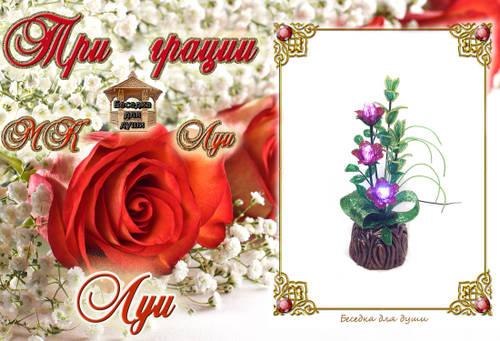 http://s2.uploads.ru/t/eNm2b.jpg