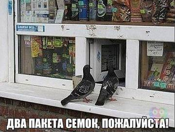 http://s2.uploads.ru/t/eVj0Q.jpg