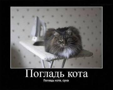 http://s2.uploads.ru/t/fG5c8.jpg