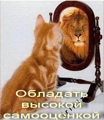 http://s2.uploads.ru/t/fjeSy.jpg