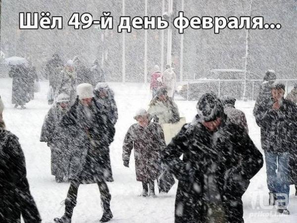 http://s2.uploads.ru/t/fx2yF.jpg