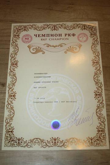 http://s2.uploads.ru/t/gAzIS.jpg