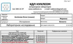 http://s2.uploads.ru/t/gMkPe.jpg