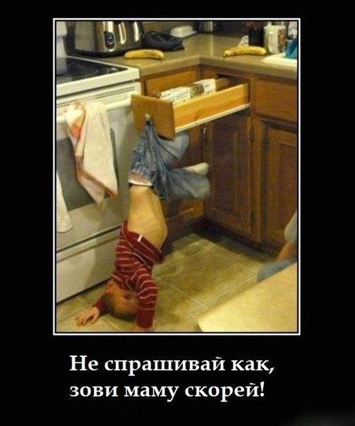 http://s2.uploads.ru/t/gZMGv.jpg