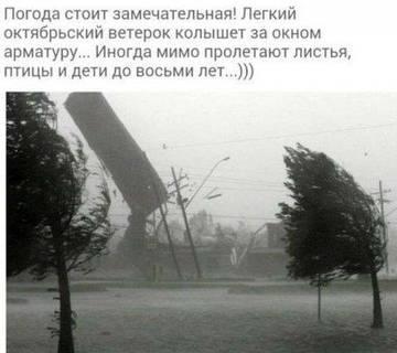 http://s2.uploads.ru/t/iH0Ab.jpg