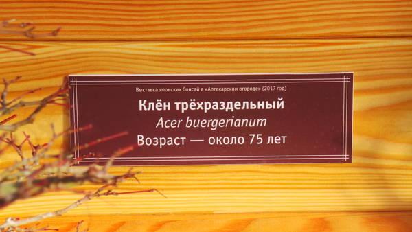 http://s2.uploads.ru/t/iXx1G.jpg