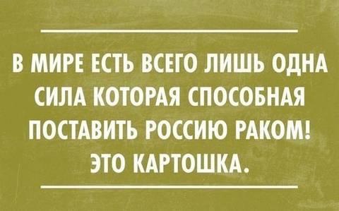 http://s2.uploads.ru/t/isaDv.jpg