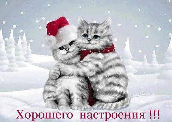 http://s2.uploads.ru/t/j3z0o.jpg