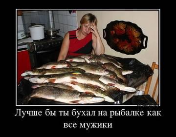 http://s2.uploads.ru/t/j98Na.jpg