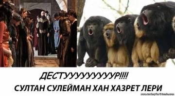 http://s2.uploads.ru/t/jHNnM.jpg