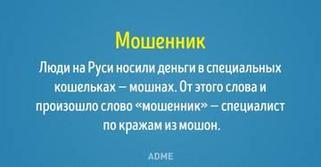 http://s2.uploads.ru/t/js9M6.jpg