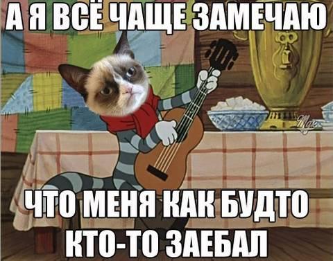 http://s2.uploads.ru/t/jwA4E.jpg
