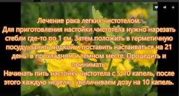 http://s2.uploads.ru/t/k1wlc.jpg
