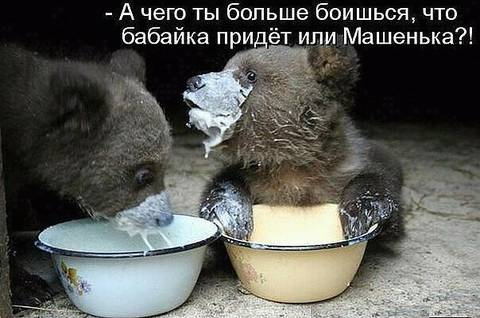 http://s2.uploads.ru/t/kFvBL.jpg