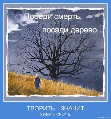 http://s2.uploads.ru/t/kZFwD.jpg