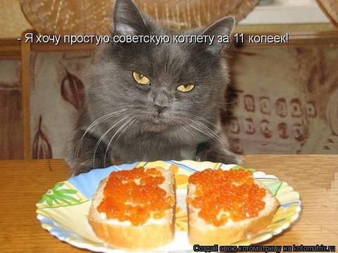 http://s2.uploads.ru/t/lZwIf.jpg