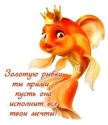http://s2.uploads.ru/t/lpJ6w.jpg