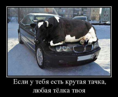 http://s2.uploads.ru/t/lsvid.jpg