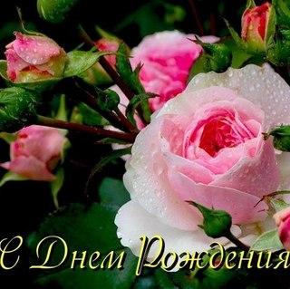 http://s2.uploads.ru/t/mC31x.jpg