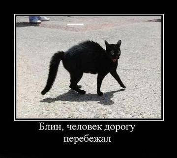http://s2.uploads.ru/t/oFN6d.jpg