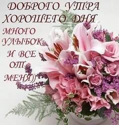 http://s2.uploads.ru/t/osXkr.jpg
