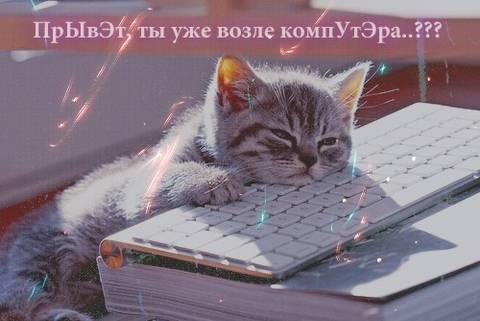 http://s2.uploads.ru/t/p2IUo.jpg