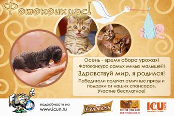 http://s2.uploads.ru/t/pDSLX.jpg