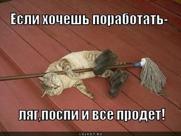 http://s2.uploads.ru/t/pJM7w.jpg