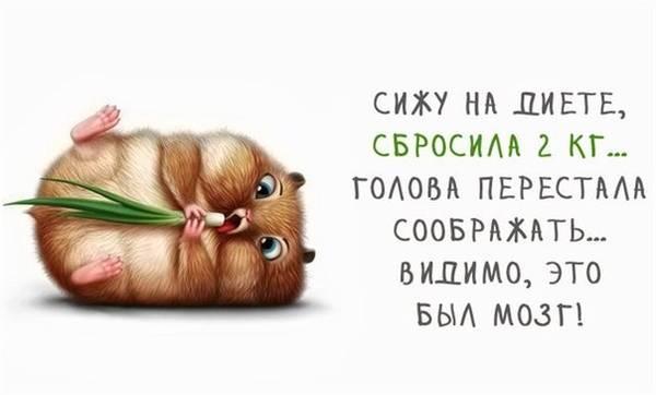 http://s2.uploads.ru/t/pKYEq.jpg
