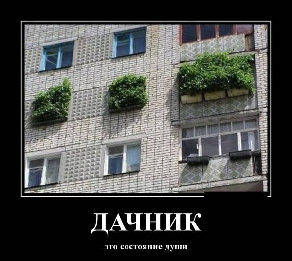 http://s2.uploads.ru/t/ptzO9.jpg