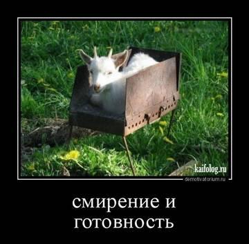 http://s2.uploads.ru/t/qwa9y.jpg