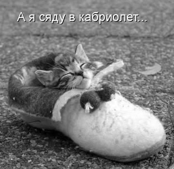 http://s2.uploads.ru/t/rfsqQ.jpg