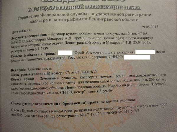 http://s2.uploads.ru/t/roxn3.jpg