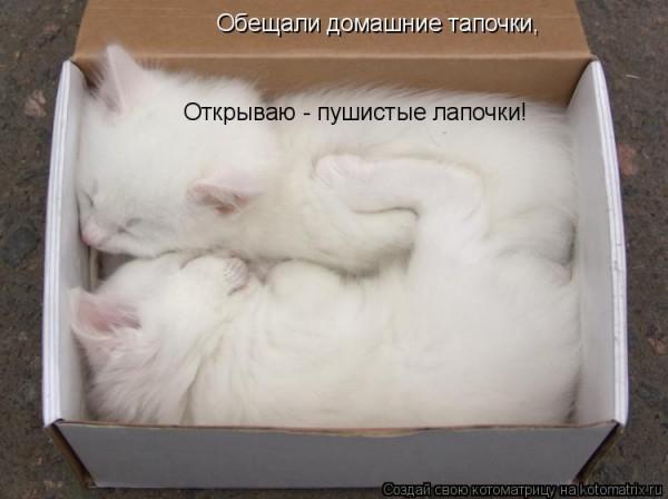 http://s2.uploads.ru/t/sZvqX.jpg
