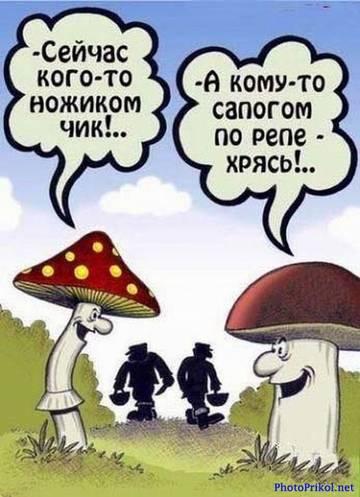 http://s2.uploads.ru/t/sZzjS.jpg