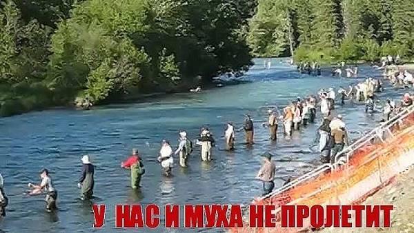 http://s2.uploads.ru/t/swGlX.jpg
