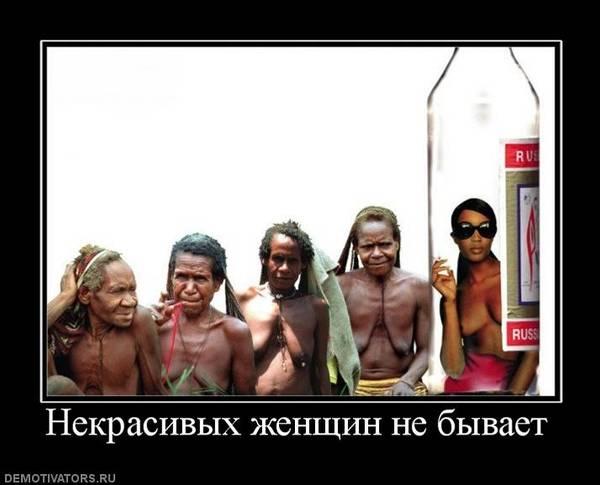 http://s2.uploads.ru/t/t3RoF.jpg