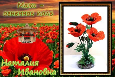 http://s2.uploads.ru/t/t8iou.jpg
