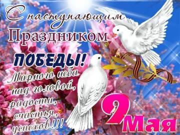 http://s2.uploads.ru/t/tXm17.jpg